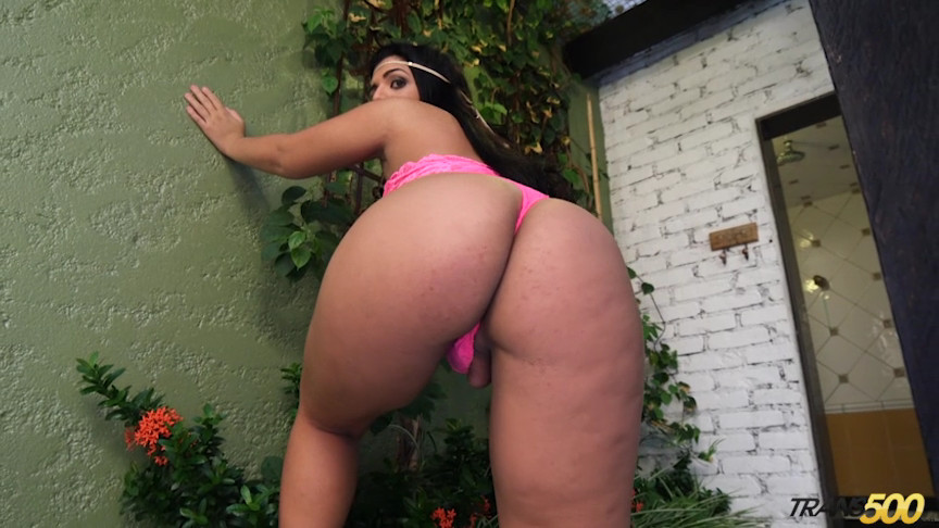 Big Tgirl booty taking cock