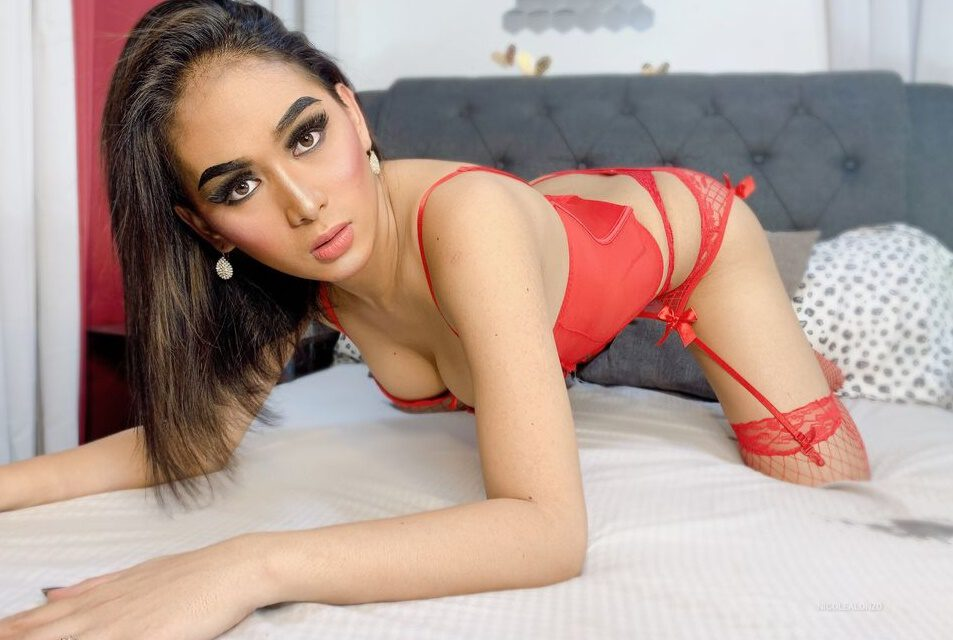 Great Ladyboy sex story from a Member